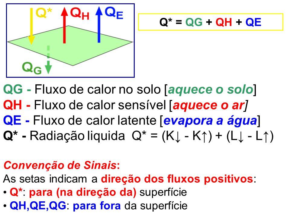QG - Fluxo de calor no solo [aquece o solo]